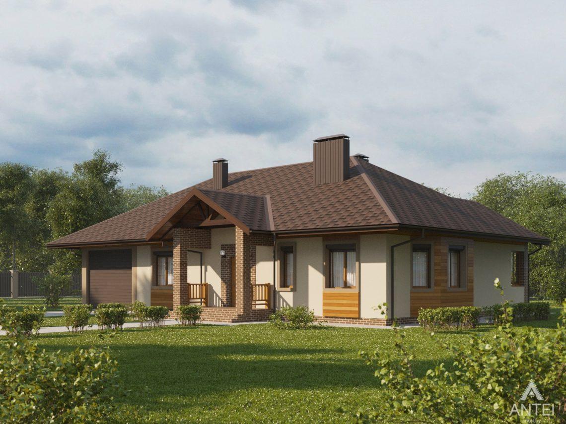 Дизайн фасадов дома в Гомельском районе - вид спереди