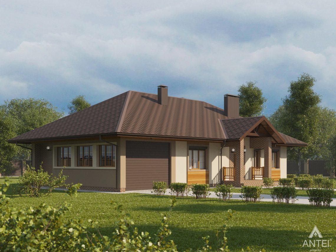 Дизайн фасадов дома в Гомельском районе - вид слева