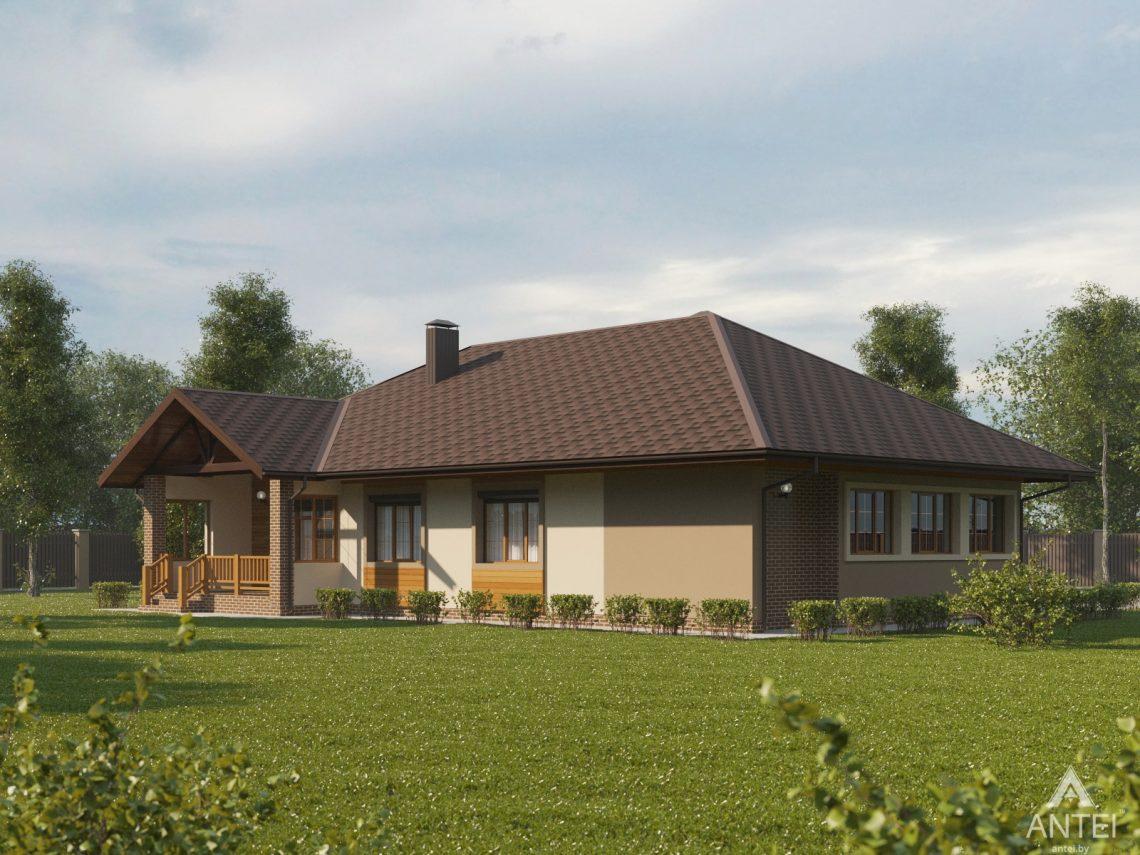 Дизайн фасадов дома в Гомельском районе - вид сзади
