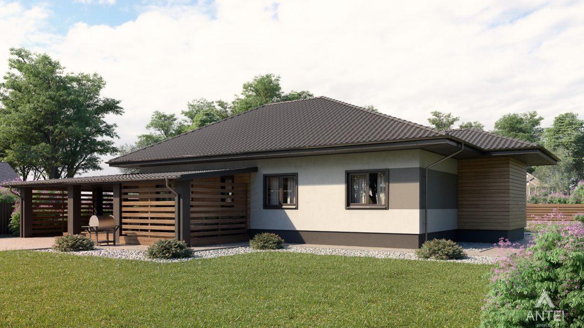 Дизайн фасадов одноэтажного жилого дома в д. Дроздово - вид сбоку