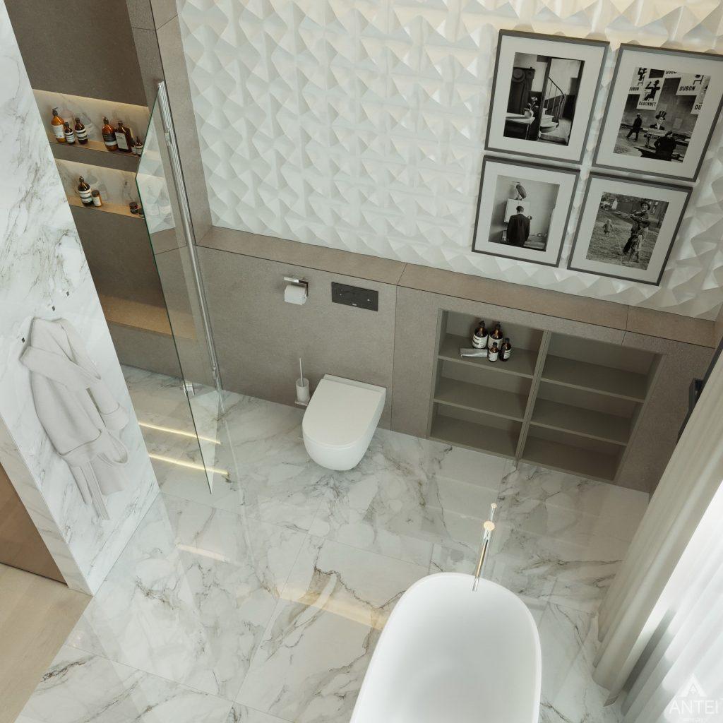 Дизайн интерьера двухэтажного дома в Гомеле - санузел фото №9